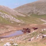 Laghetto Monte Nuria