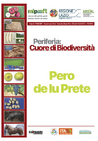 05_PERU DE LU PRETE_33-38