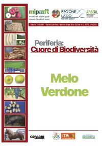 07_MELO VERDONE CITTAREALE_45-50