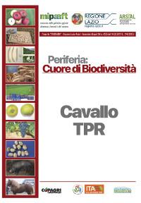 09_CAVALLO TPR CONTIGLIANO_59-64