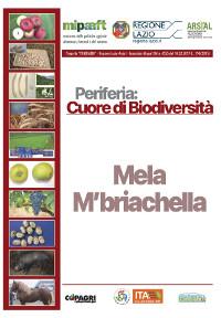 10_MELI MBRIACHELLA CONTIGLIANO_65-70